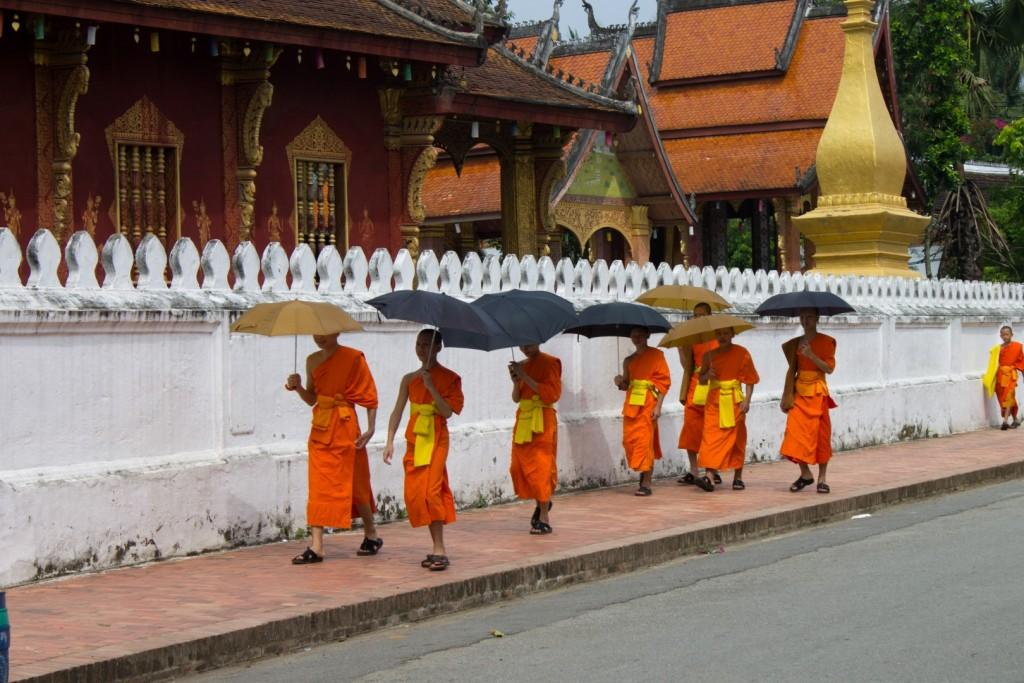 Novice monks walking to monk school