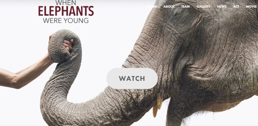 https://www.whenelephantswereyoung.com/#trailer